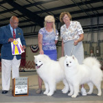 Ducky with her sire MoJo winning at the dog show.